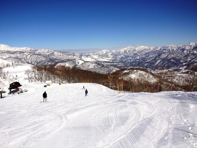 カスタマイズページ白馬五竜スキー場
