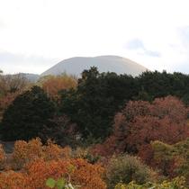 *【大室山】当館の全客室から眺める大室山