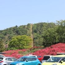 目の前に見えるのが「小室山」です。土曜日・日曜日・GWは、駐車場が混みますのでお気を付けください。