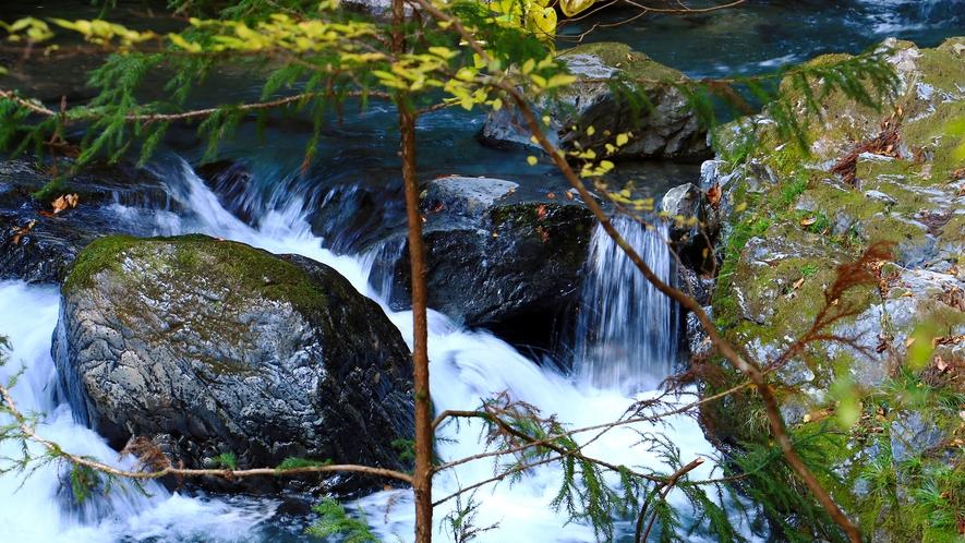 庭園の横を流れる桐生川
