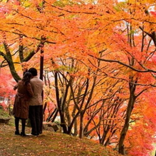 秋カップル2