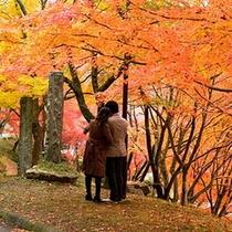 秋カップル