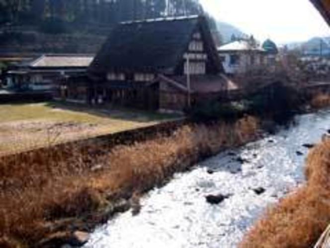 蛍の見られる川