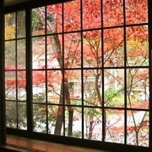 窓から紅葉