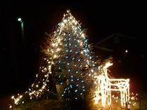 クリスマスのお庭