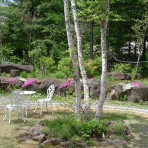 初夏の庭先