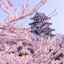 墨俣城と桜