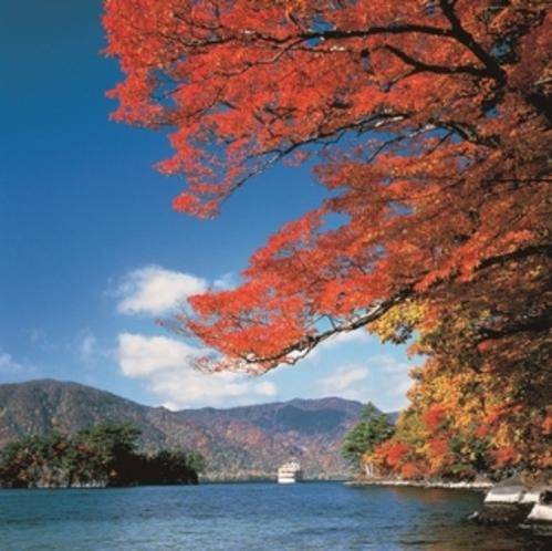 車で約2時間  錦秋の十和田湖(十和田市)