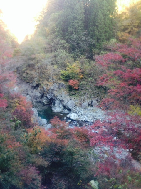 大滝 紅葉