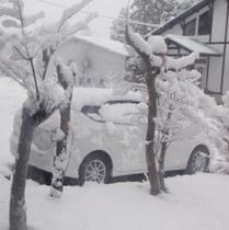2013.04.21朝起きたら10cm」の積雪が(゚o゚;桜いつ咲くの;・・・