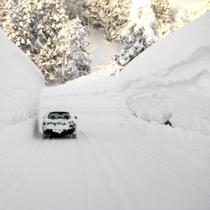 *雪の壁と車