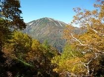 秋の雪倉岳