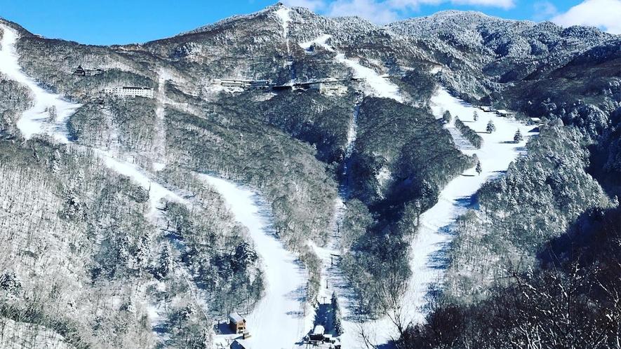 *ゲレンデ/山の駅から臨むスキー場!オーナーおすすめの絶景スポットです!
