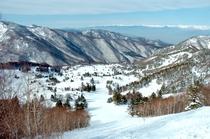 山の紅葉を白化粧する純白の冬