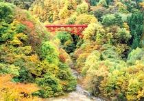 笠岳の景色を見事に変える秋