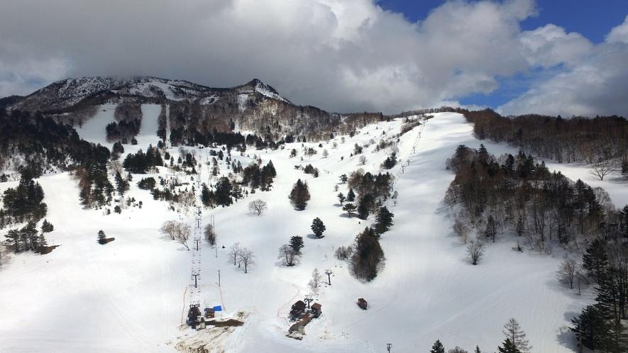 今冬は最高のパウダースノー舞うYAMABOKUワイルドスノーパークへ!