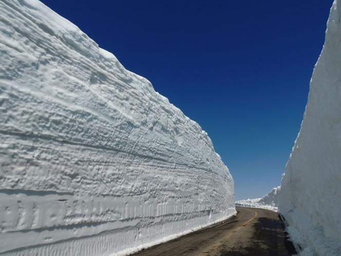 蔵王エコーライン 雪の回廊1