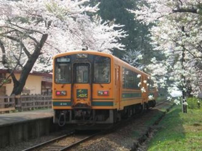 津軽鉄道と桜