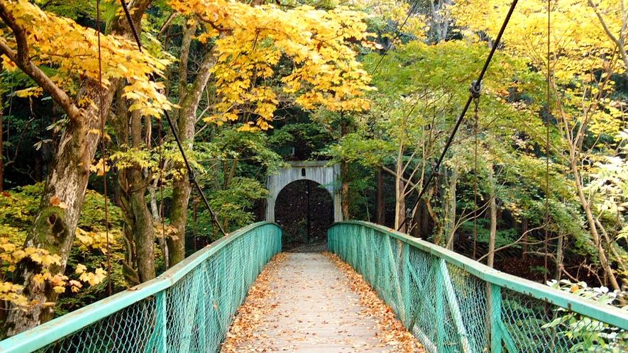 秋のみどり橋