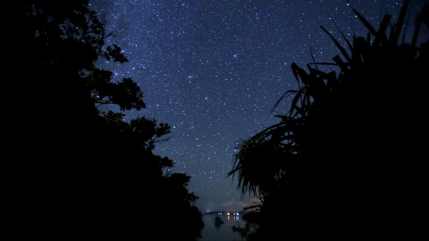 【観光イメージ】スターウォッチング:美しい星空は必見
