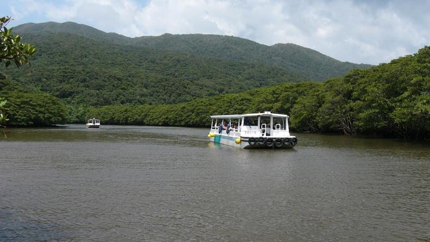 【観光イメージ】西表島(いりおもてじま):仲間川遊覧ボート