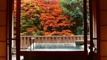 紅葉の時期に見る貸切露天風呂