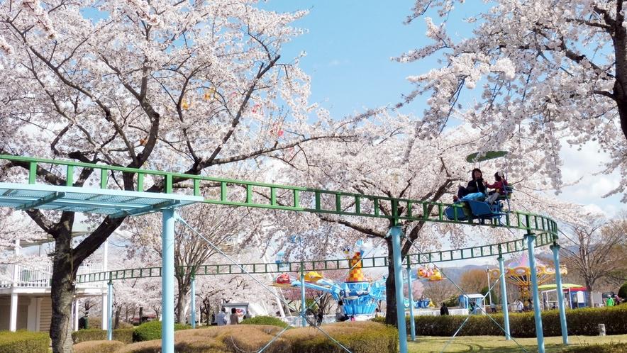 【八戸公園/桜の季節】 車で約16分 子供達に人気の遊園地ゾーンです。