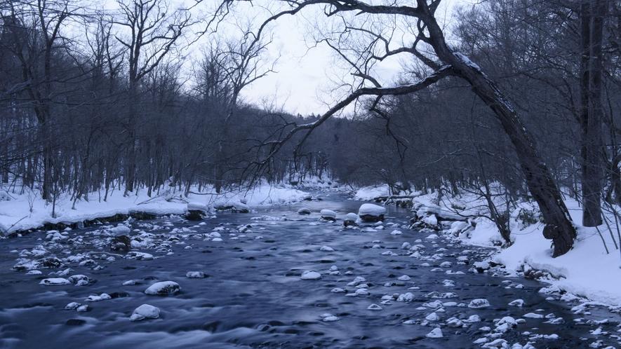 【奥入瀬渓流/冬】 静寂に包まれた冬の様子です。