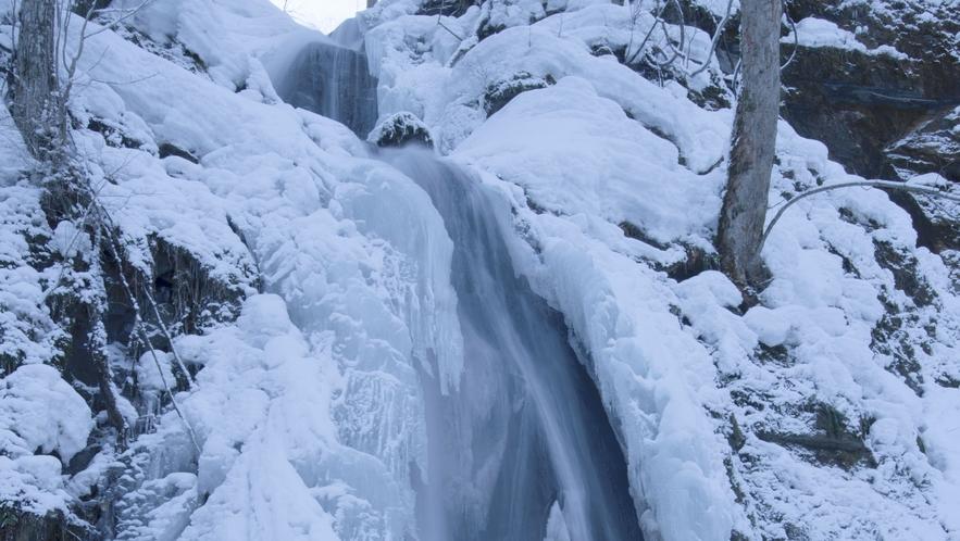 【奥入瀬渓流/冬】 静寂に包まれた冬の様子です。 「氷瀑」がご覧いただけます。