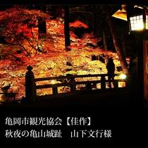 ▲亀岡市観光協会【佳作】秋夜の亀山城趾 山下文行様