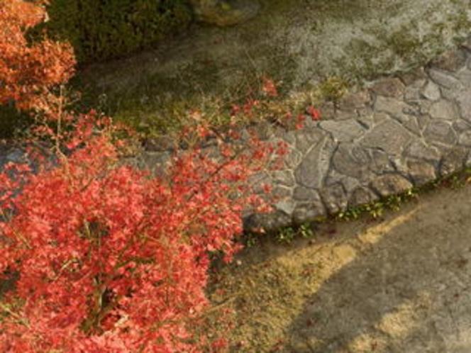 中庭の風景4