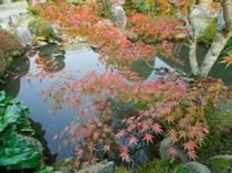 中庭の風景5