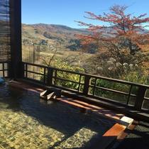 秋の景色 露天風呂より