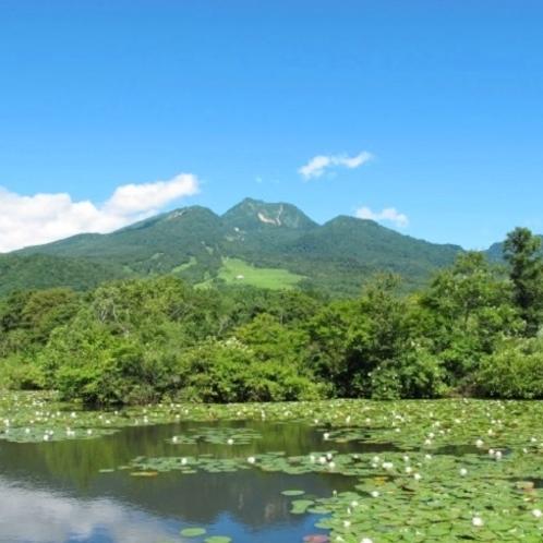 いもり池からの妙高山の眺め(車で約10分)