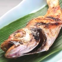 日本海の極上の味覚「のどぐろ」