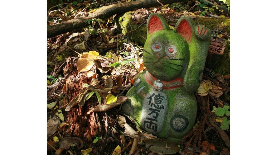 【周辺・景観】猫石仏