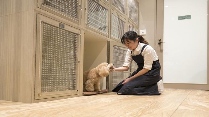 【ワンちゃんとリゾートステイ♪】朝食&愛犬お預かりサービス付きプラン