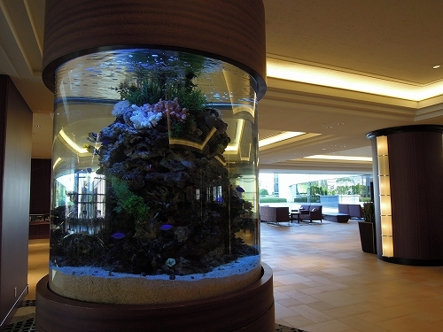 ホテルフロント・ロビー周り アクアリウム風景(イメージ)