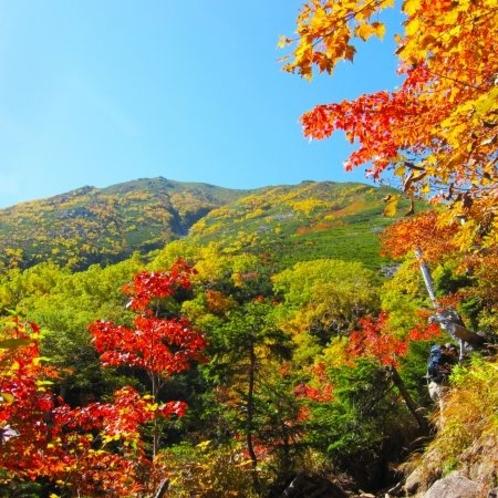 紅葉の見ごろは10月中旬~