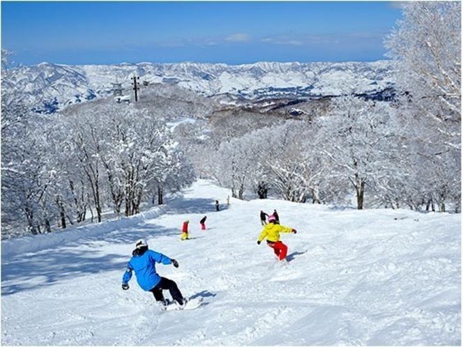 乗鞍スノーリゾート ゲレンデイメージ