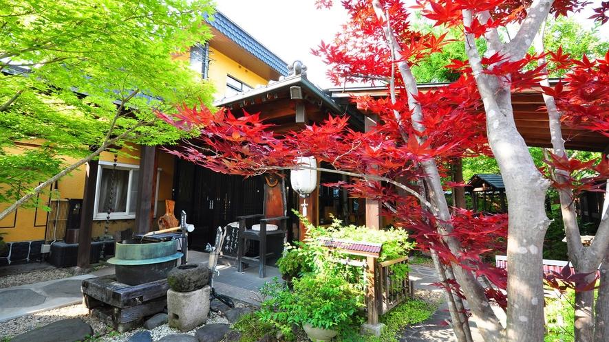 当館庭園の紅葉(例年見ごろは10月中旬~11月上旬)