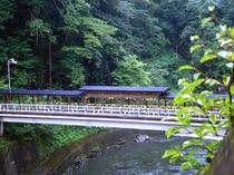 杖立川の下流にかかる「もみじ橋」
