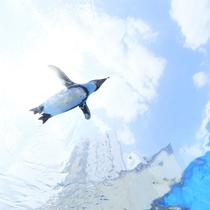 サンシャイン水族館2