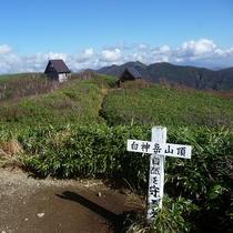 白神岳山頂からの景色