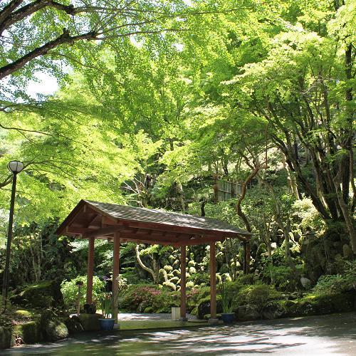 緑輝く庭園