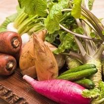 新鮮旬野菜