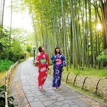 竹林の小路は人気散策コースです。