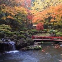 15000坪の日本庭園