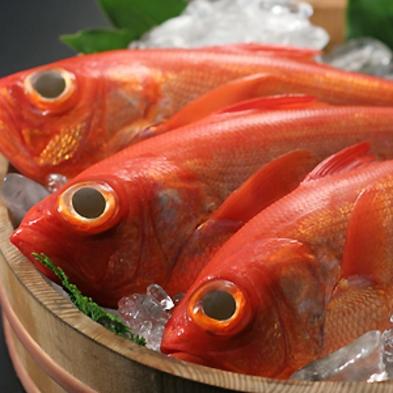 伊豆の海の幸を愉しむ新鮮海会席彡下賀茂温泉100%かけ流し♪【アッパレしず旅】