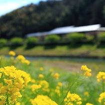■青野川より外観(2月)